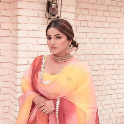 Shehnaz Kaur Gill Movies, Biography, Boyfriend, Family, Wiki & More